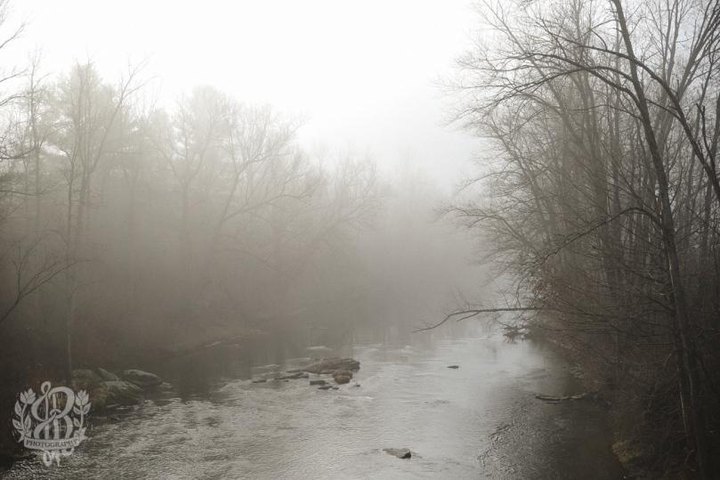Foggy Stream in Essex