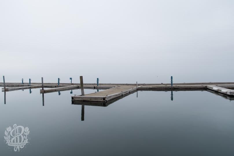 Essex_Fog-5501