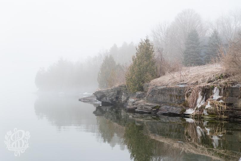 Essex_Fog-5511