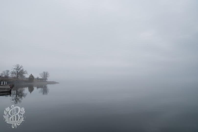 Essex_Fog-5522