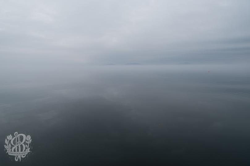 Essex_Fog-5539