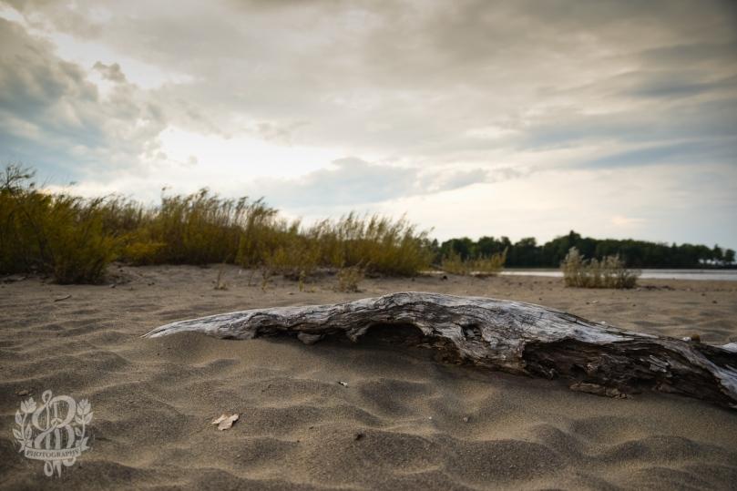 Willsboro_beach-6895