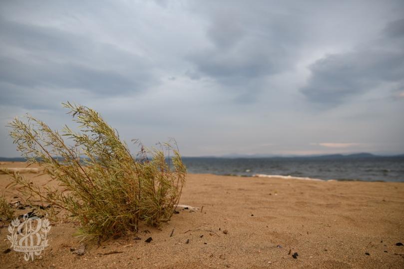 Willsboro_beach-6911